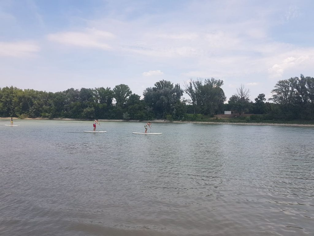 SUP-osok a Szentendrei Dunán