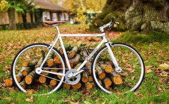 Őszi szünet - Szentendre Skanzen programok